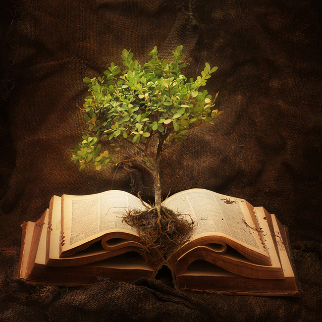 Author Services - Tree of Knowledge